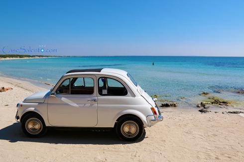 Immagine di Punta Prosciutto a fine estate