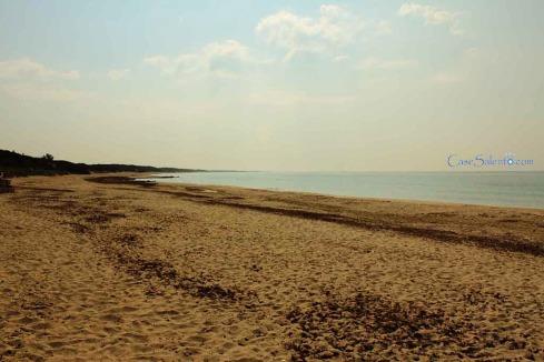 spiaggia sabbia Torre Colimena