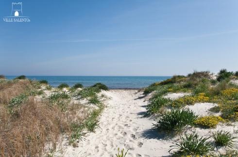La spiaggia di fronte alla villa code m711